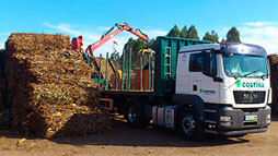 Forest biomass energy